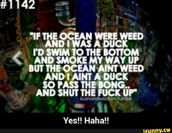 'IF THE OCEAN WEED 