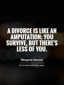 A DIVORCE IS LIKE AN 
