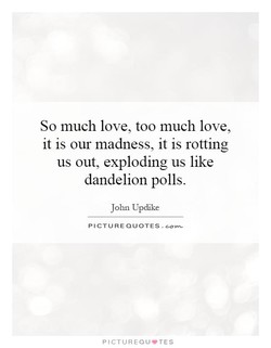 So much love, too much love, 