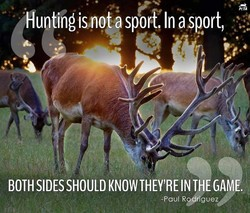 Hunting is not a sporf.ln asport, 