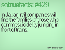 sotræfacts: #429 