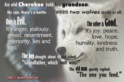 An old Cherokee told 