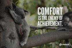 COMFORT 