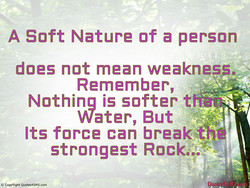A Soft Nature of a person 