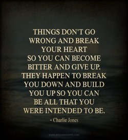 THINGS DON'T GO 