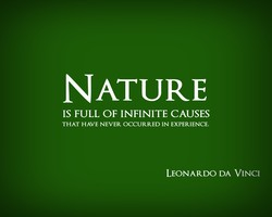 NATURE IS FULL OF INFINITE CAUSES THAT HAVE NEVER OCCURRED IN EXPERIENCE. LEONARDO DA VINCI