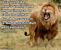 It is just like 