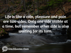 Life is like a coin, pleasureand pain 