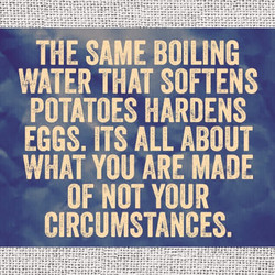 THE SAME BOILING 
