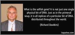 What is the selfish gene? It is not just one single 