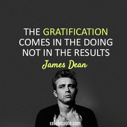 THE GRATIFICATION