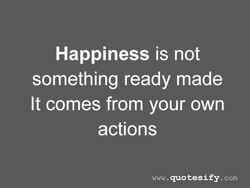 Happiness is not 