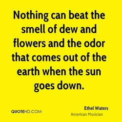Nothing can beat the 