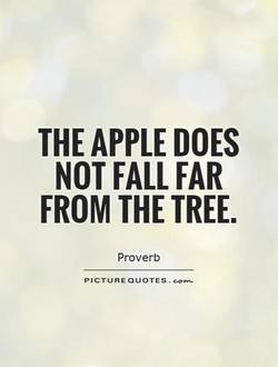 THE APPLE DOES 