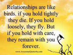 Relationships are like 