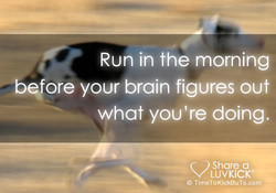 Run in the morning 