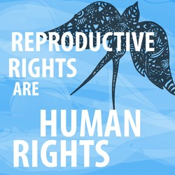 REPRODj VV 