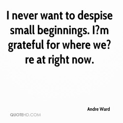 I never want to despise 
