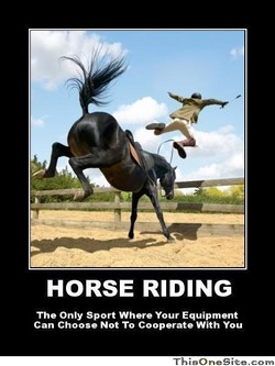 HORSE RIDING 