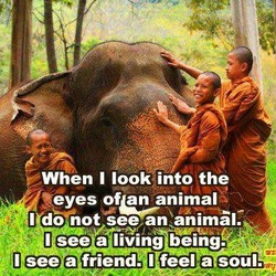 When I look into the 