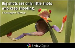 Big shots are only little shots 