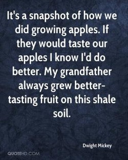 It's a snapshot of how we 