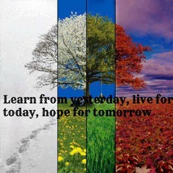Learn fro 