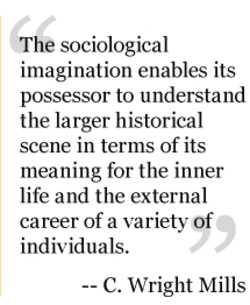 The sociological 