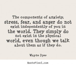 The components of anxiety. 