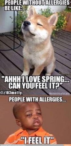 PEOPLE WITHOUT ALLERGIES-