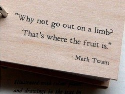 ' 'Why not go out on a limbV 