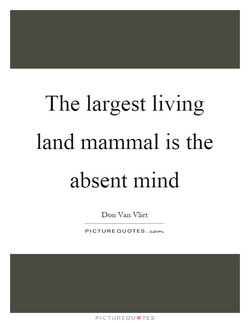 The largest living 