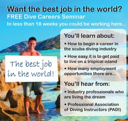 Want the best job in the world? 
