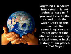 Anything else you're 