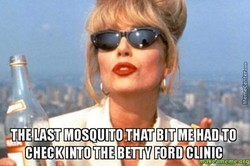 THEUST MOSQUITOJHAT BIT ME HAD TO 