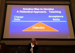 Solution Was io Develop 