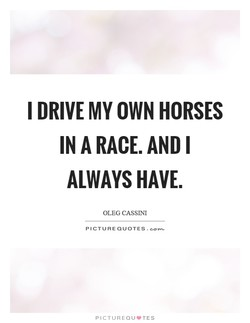 I DRIVE MY OWN HORSES 
