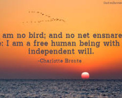 am no bird; and no net ensnare 