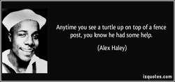 Anytime you see a turtle up on top of a fence 