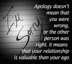 Apology doesn 't 