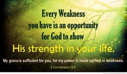 Every Wealmess 