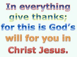 Xn everything 