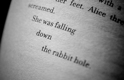 feet. 
