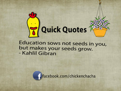 Quick Quotes 