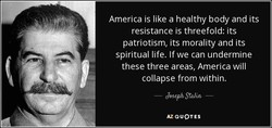 America is like a healthy body and its 