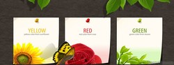 YELLOW 