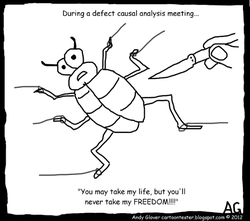 During a defect causal analysis meeting..