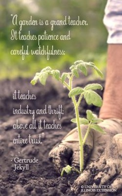 Quotes About Reading And Gardening 26 Quotes