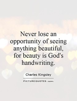 Never lose an 