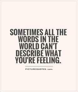 SOMETIMES ALL THE 